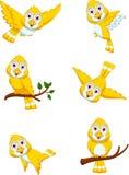 Gulligt gult tecken för fågeltecknad filmuppsättning royaltyfri illustrationer
