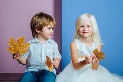 Gulligt hållande blad för pys och för flicka på färgbakgrund Barn annonserar din produkt och tjänst Höst royaltyfria foton