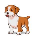 Gulligt hundanseende Arkivbild