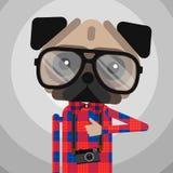 Gulligt husdjur för hund för modeHipstermops Royaltyfria Bilder