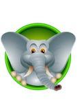 Gulligt huvud av elefanttecknad film Royaltyfri Illustrationer