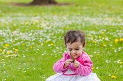 Gulligt knubbigt litet barn som ser ett blad som nyfiket utomhus undersöker naturen i parkera Arkivbilder