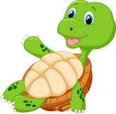 Gulligt koppla av för sköldpaddatecknad film Royaltyfri Fotografi