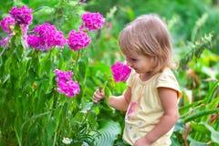 Gulligt liten flickasammanträde bland blommorna royaltyfria bilder