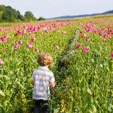 Gulligt lyckligt litet blont barn i blommande vallmofält royaltyfria foton