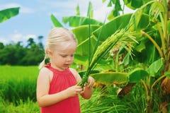 Gulligt nyfiket behandla som ett barn undersöka rispacken på grönt fält Royaltyfria Bilder