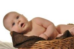 Gulligt nyligen-fött behandla som ett barn i korgen arkivbild