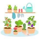 Gulligt och färgrikt arbeta i trädgården hjälpmedel Fotografering för Bildbyråer