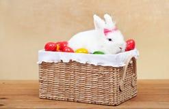 Gulligt sammanträde för easter kanin i korg Fotografering för Bildbyråer