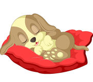 Gulligt sova för hundtecknad film Royaltyfri Foto