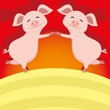 Gulligt stå för svin Arkivfoton