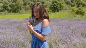 Gulligt tycka om för kvinnlig som är doftande av lavendelblommor stock video