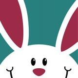 Gulligt vitt kaninkort Fotografering för Bildbyråer