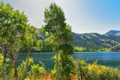 The Gulllake in park.Travel across the USA Royalty Free Stock Image