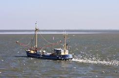 Gulls behind dutch shrimper at Wadden Sea, Ameland Royalty Free Stock Photo
