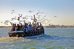 Gulls hitching a ride to Mainland. Over Dwarka Bay of seagulls trace a passenger ferry crossing for food crossing from Bet Dwarka to the India mainland. Shooting Stock Photos