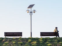 Gulls looks after over. Man waiting on a bench in the park royalty free stock photo
