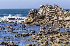 Free Gulls On The Rocks - Pacific Grove, California Royalty Free Stock Photo - 123183515