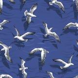 Gulls Seamless Pattern Stock Photos