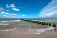 Gulls sitting on old wooden posts protecting the beach from waves stock photo