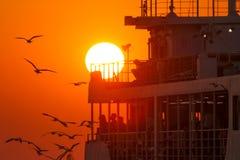 Gulls at sunset accompany the ship Stock Photo