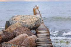 Gulls on wooden poles in the Baltic Sea. Zelenogradsk. Russia Stock Photography