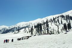 Gulmarg berg i stat av Jammu and Kashmir, Indien Royaltyfri Bild