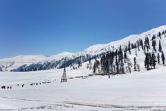 Gulmarg berg, Kashmir, Indien Royaltyfria Foton