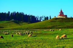 Gulmarg de Kashmir fotos de stock
