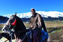 A cowboy riding on his horse at Gulmarg, India. Royalty Free Stock Photo