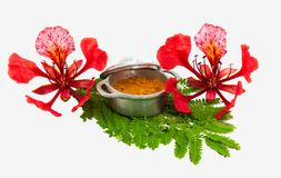 Gulmohar flower in white background. A gulmohar tree is an ornamental tree that is scientifically called Delonix regia. The Gulmoh. Ar tree, also known as stock photos