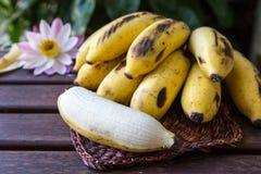 Gulna den kultiverade bananen, rå organisk guling behandla som ett barn bananer i ett B Royaltyfria Foton