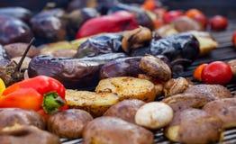 Gulna, göra grön spanska peppar, potatisar, champinjoner, tomater och aubergine som grillas till guld- brunt, rött Royaltyfri Bild