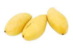 Gulna mango Royaltyfri Fotografi