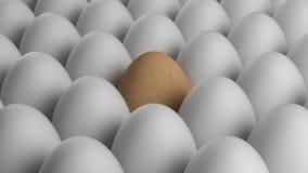 Gult ägg Arkivbild
