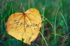 Gult blad med inskriften SEPTEMBER Begrepp av hösten slut av sommar och början av hösten Royaltyfri Fotografi