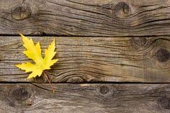 Gult blad på gammal träbakgrund Royaltyfri Foto