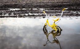 Gult Childs cykelsammanträde i vatten i ett fält royaltyfri fotografi