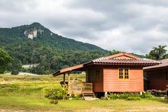 Gult fält och härliga bergsikter Och hus royaltyfria foton