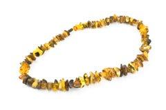gult halsband Arkivfoton