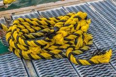 Gult rep på skeppsdocka Royaltyfri Foto