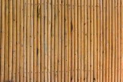Gult staket för bambuavskildhetsskärm, closeup, bakgrund Arkivbilder