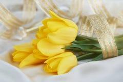 Gult tulpan-, doft- och guldband Arkivfoto