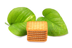 Gulucose Biscuits Stock Images