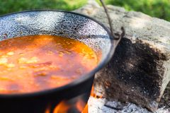 Gulyasleves stew Royalty Free Stock Image