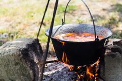 Gulyasleves stew Royalty Free Stock Images