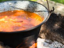 Gulyasleves stew Royalty Free Stock Photo