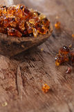 Gum arabic, also known as acacia gum Royalty Free Stock Photography