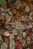Gum on wall. A wall covered with gum in Verona Italy Royalty Free Stock Photography
