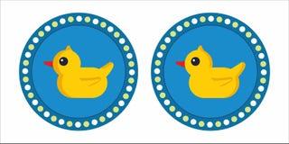 guma kaczki Obrazy Royalty Free